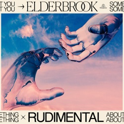 Joel Laslett Pott, Elderbrook & Rudimental, Something About You