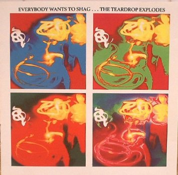 Chris Sheldon, Teardrop Explodes Everybody Wants To Shag...